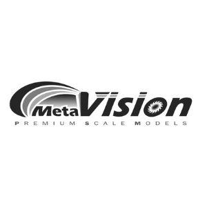 meta vision